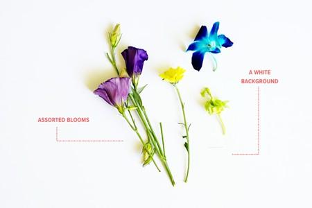 DIY con flores