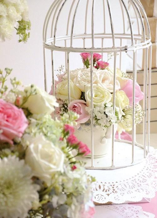 centro-jaula-flores