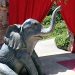 comunion-tematica-circo-elefante